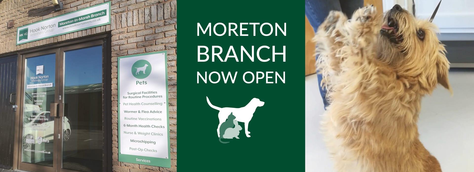 Moreton-in-Marsh Branch - Hook Norton Veterinary Surgeons